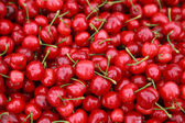 Ripe red cherries with sticks background — Stock Photo