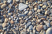 Gray pebbles background — Stock Photo