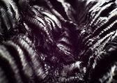 Details of burned wood — Stock Photo