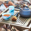Chinese tea ceremony  (tea pot and tea pair) — Stock Photo