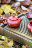 Chinese tea ceremony (tea pot and tea cup) — Stock Photo