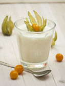 Yogurt con fruta — Foto de Stock