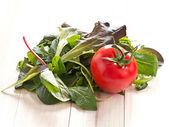 Selección italiana ensalada con tomates frescos — Foto de Stock