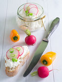 Cottage cheese with radish — Stock Photo