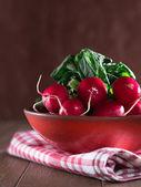 Radish in a bowl — Stock Photo