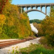 Stock Photo: Steam train far off