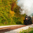 Steam train approaching — Foto Stock #18343589