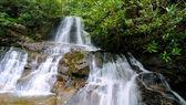 Laurel Falls fr-wide — Stock Photo