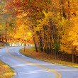 Autumn road with hiker — Stock Photo #23902343
