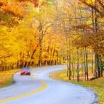 Постер, плакат: Autumn curve with car