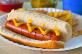 Hot dog w mustard — Stock Photo