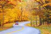 Autumn curve with car — Stock Photo