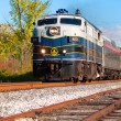 Scenic passenger train — Stock Photo
