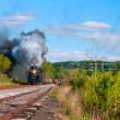 Stock Photo: Steam train coming