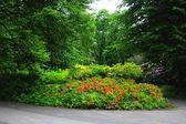 Blumenbeet in park — Stockfoto