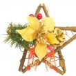 Christmas ornament — Stock Photo #18352415