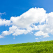 Meadows and summer sky — Stock Photo