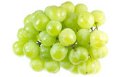 Bunch of grapes — Stockfoto