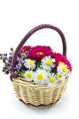 Kosz kwiatów — Zdjęcie stockowe