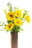 海棠花 — 图库照片