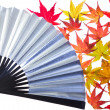 Maple leaf and fan - Foto de Stock