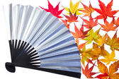 Maple leaf and fan — Stock Photo