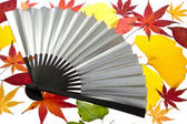 Maple leaves and the fan — Stock Photo