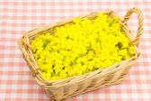Flower of rape that was served in a basket — Stock Photo