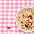Stock Photo: Fruits granola