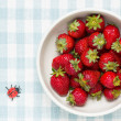 Strawberries in a bowl and ladybird — Stock Photo #24512533