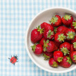 Strawberries in a bowl and ladybird — Stock Photo #24653325