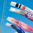 Stock Photo: Carp streamers