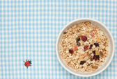 Fruits granola — Stock Photo