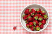 Strawberries in a bowl and ladybird — Stok fotoğraf