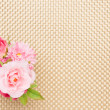 Artificial rose on the table cloth — Stock Photo