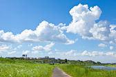 Meadow with summer sky — Stock Photo