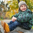 Beautiful boy in the autumn park - Stock Photo