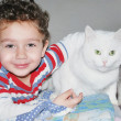 A boy and a cat  . — Stock Photo