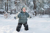 Boy in the woods — Stock Photo