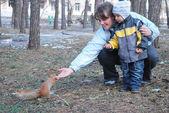 Chico madre alimenta una ardilla — Foto de Stock