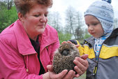 A woman with a boy holding a hedgehog — Stock Photo
