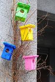 Birdhouse — Foto Stock