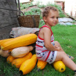 Small boy sitting on a pile of orange squash. — Stock Photo