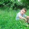 Little boy sits on a lawn of clover. — Stock Photo #27828515