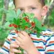 In the forest, a boy holding a bunch of strawberries. — Stock Photo
