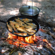 Stock Photo: Stake is fried fish in frying pand some heated pot