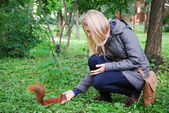 The park, the girl feeding a red squirrel. — Stock Photo