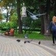 The park, the girl feeding pigeons — Stock Photo #31435887