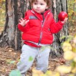 in the forest a little curly-haired girl holding a red apple in — Foto Stock