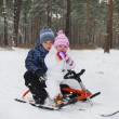 The boy with a little girl sitting on a sled. — Stock Photo #37306793